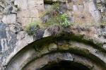 Dört Kilise ana kapısı