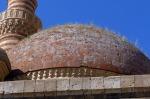 İshakpaşa Sarayı cami kubbesi