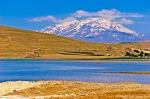 Erciş Çelebibağı Sazlığı ve arkada Süphan Dağı